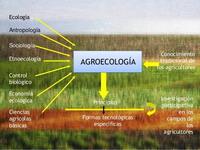 Agroecologia200