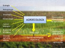 Agroecologia220