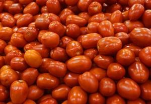 tomates pera octubre 2015