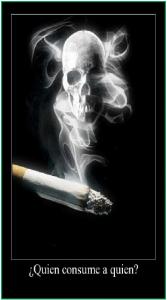 T46 Ebola y tabaco 2