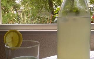 Bebida_de_jengibre_limon_estevia