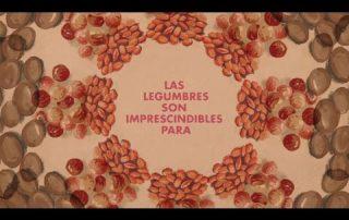 las-legumbres-libro-fao