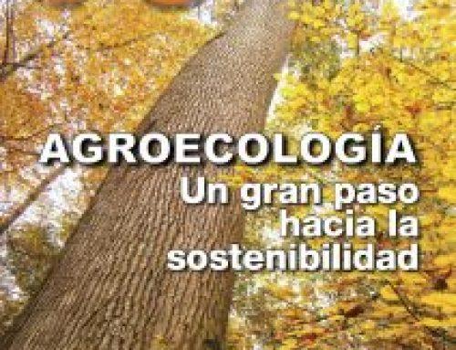 ¿Agroecología y producción ecológica son convergentes?