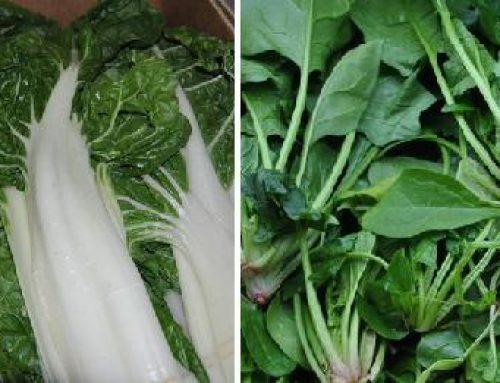Espinacas para el potaje, arroz con alcachofas…