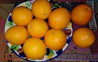 Naranjas temporada 2016 pq