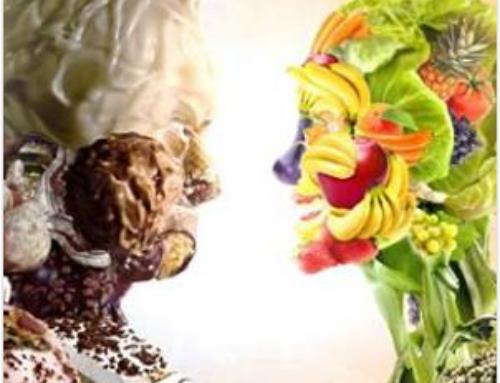 Los hábitos alimentarios no nacen, se hacen