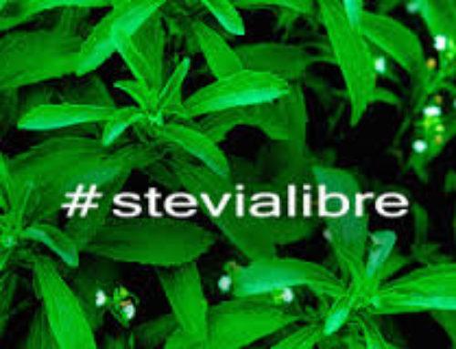 Legalizado en toda Europa el comercio de hoja seca de stevia