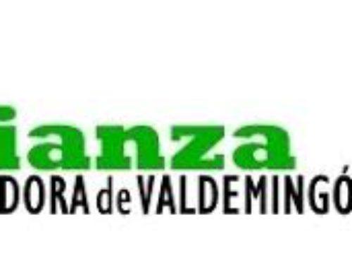 La Incineradora de Valdemingómez, una amenaza para la salud de la población del sureste madrileño