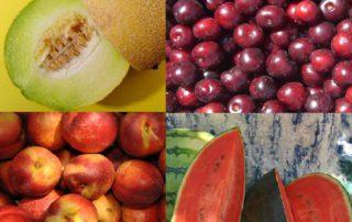 Melon cerezas nectarinas sandia