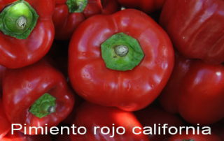 Pimiento rojo california