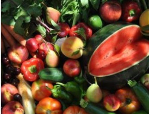 Alimentación de temporada: Verano
