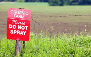dieta-sin-pesticidas