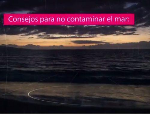 Consejos para no contaminar el mar