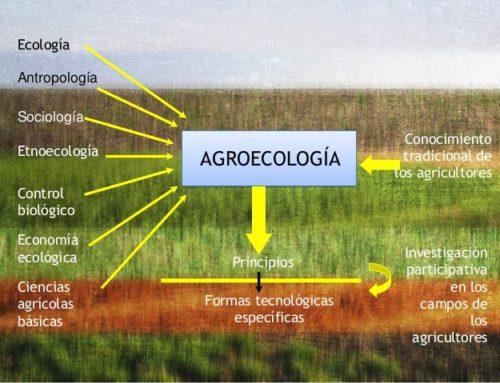 16 de octubre de 2017, Día Internacional para la Alimentación Agroecológica