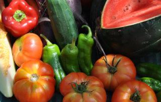 Tomates y pimientos 07 14