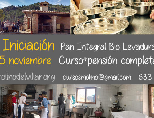 24 -25 noviembre. Curso Iniciación al Pan Bio Auténtico