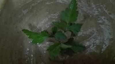 Crema de siitake patata y puerro 01