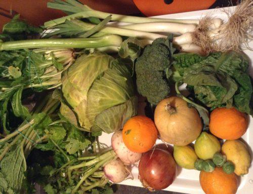 Vitamina A en los vegetales naranja, amarillos y verdes