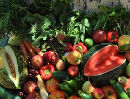 Salud y buenos alimentos en verano
