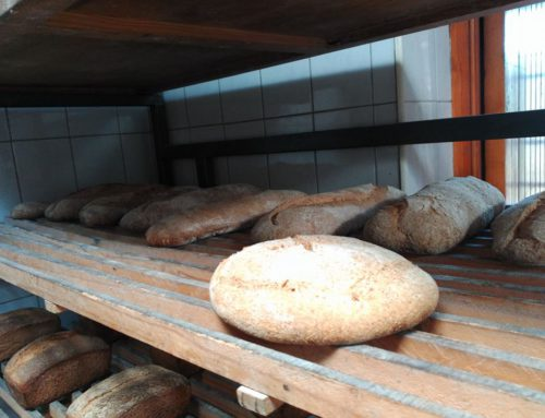 Nota de prensa de la Asociación de Panaderías Biológicas